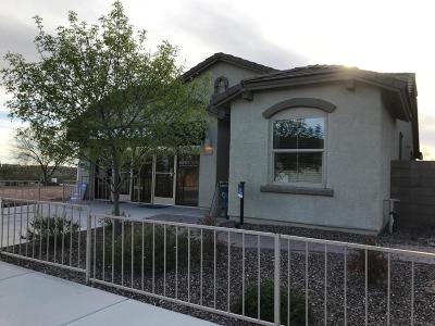 Single Family Home For Sale: 11303 E Squash Blossom Loop E
