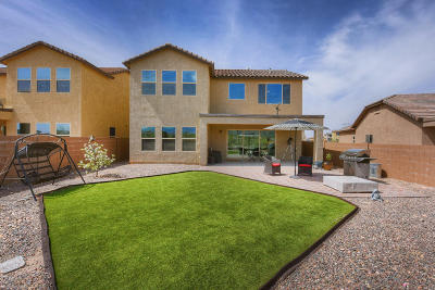 Single Family Home For Sale: 5523 S Sunrise Peak Road