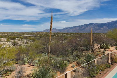 Oro Valley Single Family Home For Sale: 33 E Big Wash Place