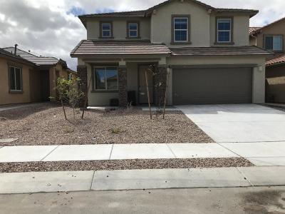 Single Family Home For Sale: 11378 E Creosote Range Drive E