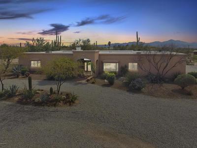 Tucson Single Family Home For Sale: 9745 N Palo Quemado