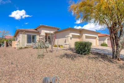 Single Family Home For Sale: 123 E Camino Rancho Cielo