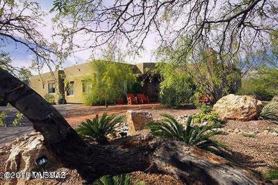 Tucson Single Family Home For Sale: 3261 N Placita De Coronado