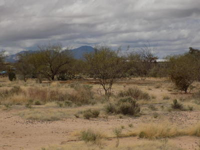 Tucson Residential Lots & Land For Sale: 14252 W Kestrel Road