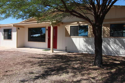 Tucson Single Family Home For Sale: 3410 S Hamilton Place