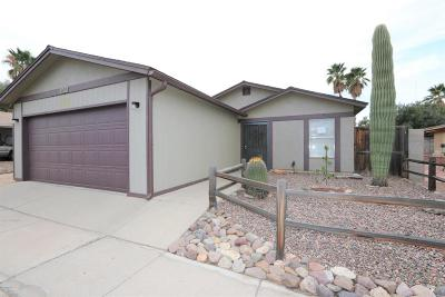 Tucson Single Family Home For Sale: 2013 W Southbrooke Circle