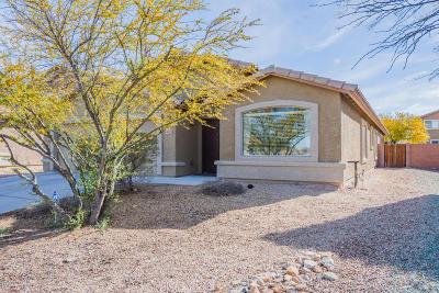 Tucson Single Family Home For Sale: 9029 S Cedarbrook Lane