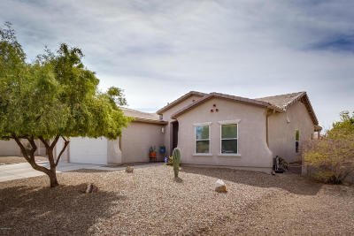 Tucson Single Family Home For Sale: 5547 W Beetle Drive
