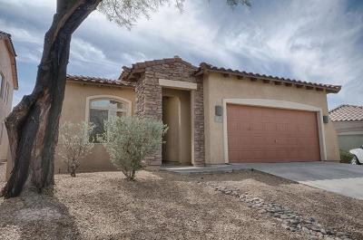 Tucson Single Family Home For Sale: 973 W Cork Oak Place