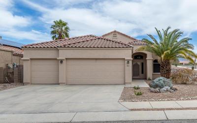 Tucson Single Family Home For Sale: 800 W Western Ridge Trail