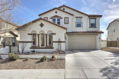 Sahuarita Single Family Home For Sale: 695 W Calle La Bolita