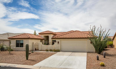 Pima County Single Family Home For Sale: 1559 N Buttes Drive