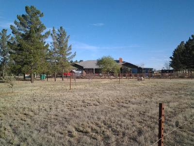 Cochise Single Family Home For Sale: 220 Papago Way