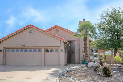 Saddlebrooke Single Family Home Active Contingent: 38085 S Elbow Bend Drive