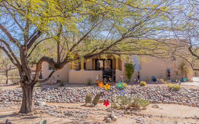 Tucson Single Family Home For Sale: 6360 N Valley View Road