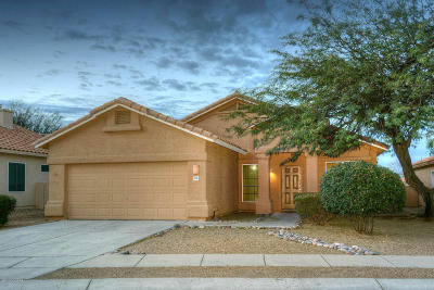 Tucson Single Family Home For Sale: 7790 E Castle Valley Way