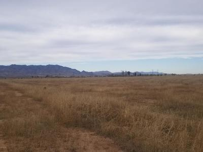 Willcox Residential Lots & Land For Sale: 5519 W Hardy Road