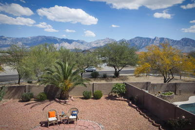 Oro Valley Single Family Home For Sale: 12996 N Desert Olive Drive
