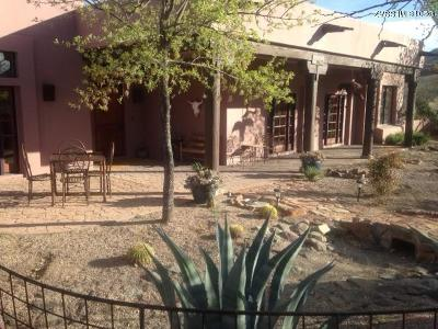 Tubac Single Family Home For Sale: 1163 Morning Star Drive Drive