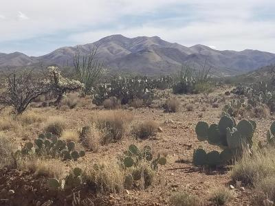 Vail Residential Lots & Land For Sale: 141 E Solar Drive