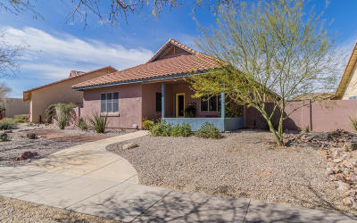 Tucson Single Family Home Active Contingent: 5256 S Morning Sky Lane
