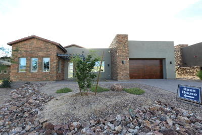 Oro Valley Single Family Home For Sale: 14241 N Hidden Enclave Place N #Lot 4