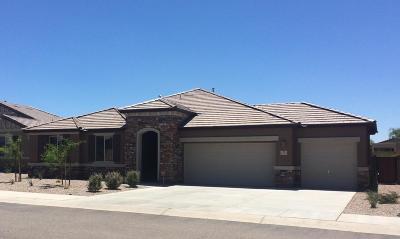 Single Family Home For Sale: 11147 W Red Quartz Trail