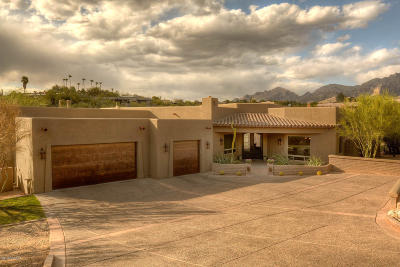 Tucson Single Family Home For Sale: 3199 E Corte De Andalucia
