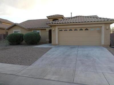 Sahuarita Single Family Home For Sale: 992 E Mowry Wash Lane