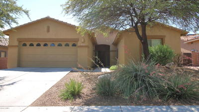 Oro Valley Single Family Home For Sale: 11705 N Sage Brook Road