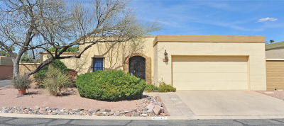 Tucson Single Family Home For Sale: 4947 E Water Street