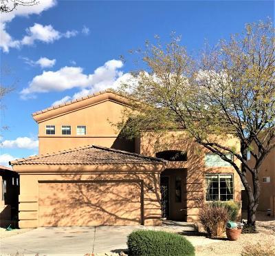 Tucson Single Family Home For Sale: 10479 E Rita Ranch Crossing Circle