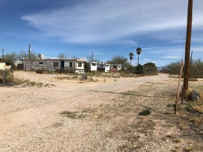 Residential Lots & Land For Sale: 9250 S Nogales Highway