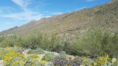 Tucson Residential Lots & Land For Sale: 7500 N Catalina Ridge Drive #55