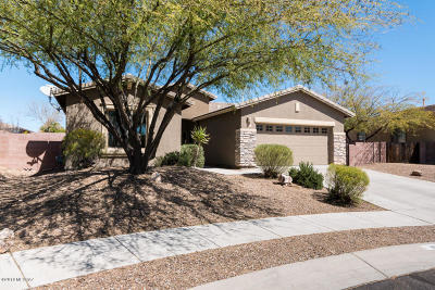 Oro Valley Single Family Home For Sale: 1536 W Sage Brook Court