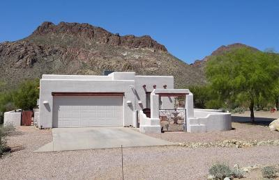 Tucson Single Family Home Active Contingent: 6066 W Tucson Estates Parkway