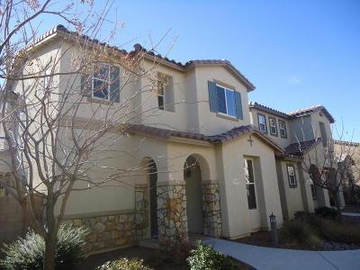 Tucson Single Family Home For Sale: 2764 N Neruda Lane