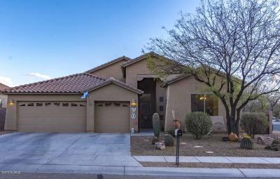 Single Family Home For Sale: 6583 W Sandy Knoll Way