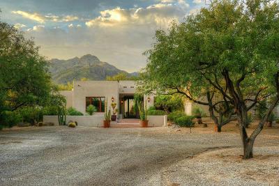 Tucson Single Family Home For Sale: 5881 N Esperero Vista Trail