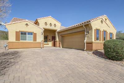 Marana Single Family Home Active Contingent: 9734 N Saguaro Breeze Way