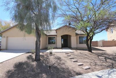 Pima County, Pinal County Single Family Home For Sale: 4900 E Butterweed Drive