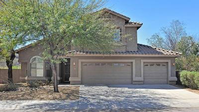 Tucson Single Family Home Active Contingent: 7941 N Iron Ridge Drive