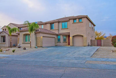 Pima County Single Family Home For Sale: 6396 W Wolf Valley Way