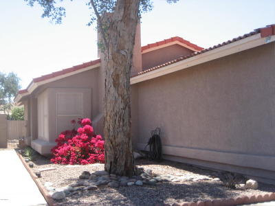 Tucson Single Family Home For Sale: 5361 W Wood Owl Drive