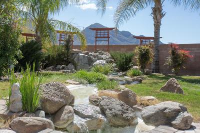 Tucson Single Family Home Active Contingent: 11213 N Platte Drive