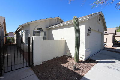 Tucson Single Family Home For Sale: 3415 W Millwheel Lane