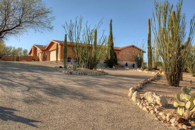 Tucson Single Family Home For Sale: 7020 N Skyway Drive
