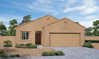 Marana Single Family Home For Sale: 12437 W Judit Court
