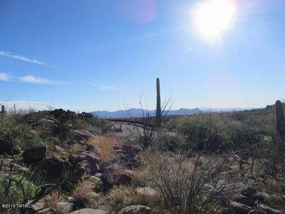 Residential Lots & Land For Sale: 13670 N Hidden Rock Place #Lot 245