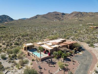 Pima County, Pinal County Single Family Home Active Contingent: 4775 W Gates Pass Road